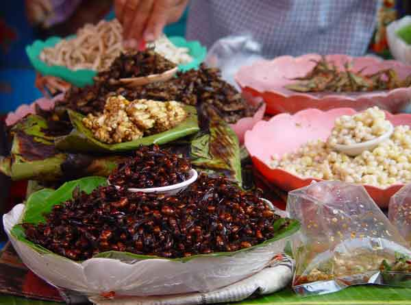 crickets and other insects are on sale in most markets