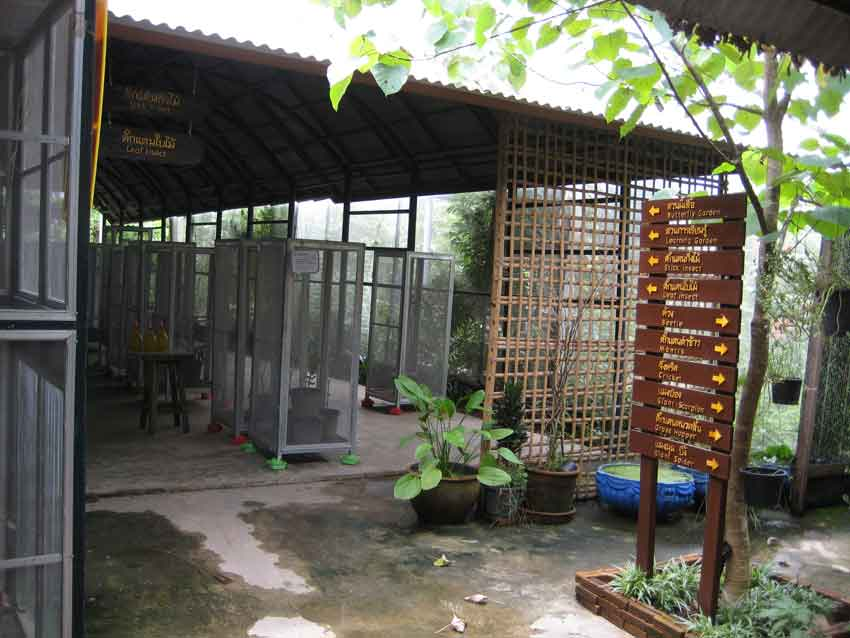SIZ is spacious and has many enclosures iwth live insects